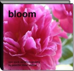 Click to preview bloom photo book