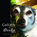 Goliath & Dinky - Arts & Photography photo book