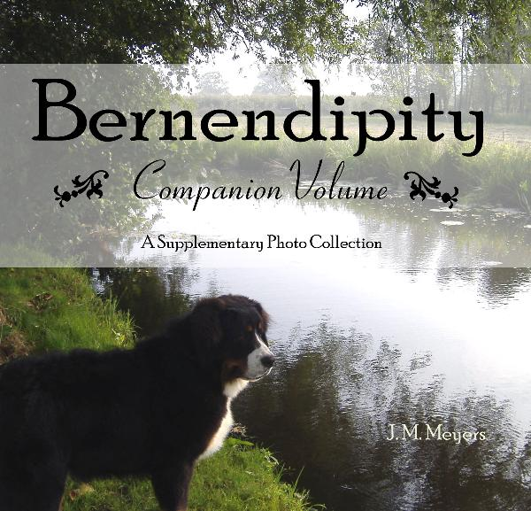 View Bernendipity Companion Volume by J. M. Meyers
