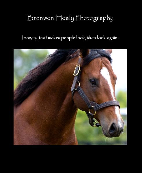 Click to preview Bronwen Healy Photography photo book