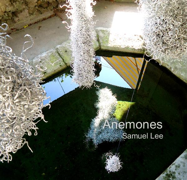 Click to preview Anemones (Installation) photo book