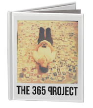 365 Project book image