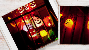 Livres photos d'Halloween