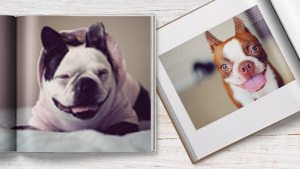 Pet Photo Books